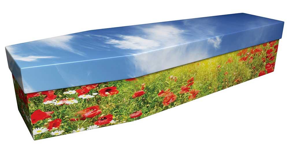 Cardboard Poppy Field